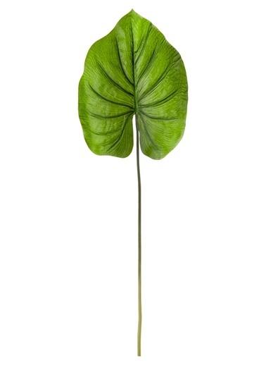 The Mia Pathos Yaprak 85 x 30 Cm Yeşil